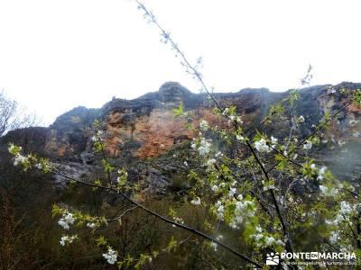 Barranco Río Dulce; senderismo wikipedia; excursiones de verano;travesias senderismo
